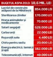 Buget ASPA